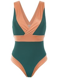 Brigitte Panelled Swimsuit Green