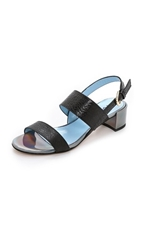 Studio Pollini Block Heel Sandals Black