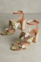 Anthropologie Billy Ella Snake Print Wood Heels Neutral