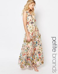 True Decadence Petite Allover Embroidered Floral Maxi Dress Multi