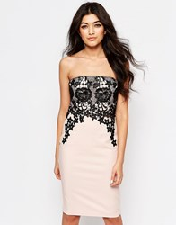Paper Dolls Bandeau Dress With Lace Overlay Pink