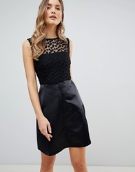 Zibi London Skater Dress With Lace Yoke Black