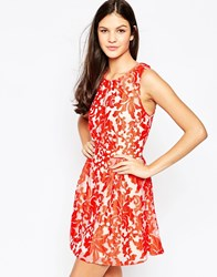 Style Stalker Firebird Lace Dress Red