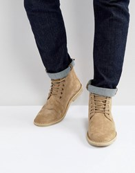 Asos Desert Boots In Stone Suede With Leather Detail Stone