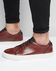 Ted Baker Kiing Leather Trainers Red