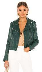 Lamarque Donna Leather Jacket In Green. Bistro Green