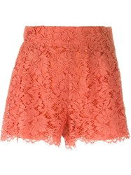 Dolce And Gabbana Floral Lace Shorts Yellow And Orange