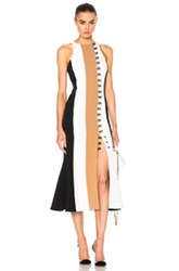 David Koma Loops And Metal Front Detail Paneled Tea Dress In Black Neutrals White Black Neutrals White