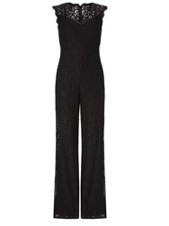 Adrianna Papell Sleeveless Lace Wide Leg Jumpsuit Black