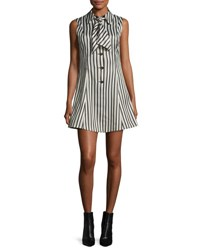 Mcq By Alexander Mcqueen Sleeveless Striped Satin Fit And Flare Mini Dress Black White Black White