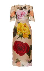 Dolce And Gabbana Garden Rose Organza Sheath Dress Print
