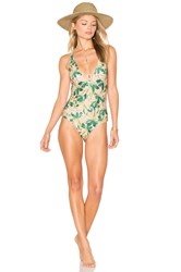 Stone Fox Swim Palma Once Piece Swimsuit Green