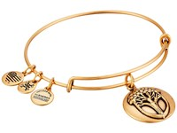 Alex And Ani Unexpected Miracles Ii Charm Bangle Rafaelian Gold Bracelet