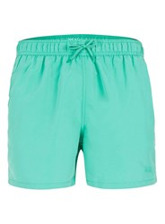 Topman Mint Green Embroidered Swim Shorts