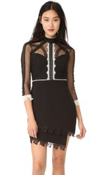 Three Floor On Point Lace Panel Dress Black White