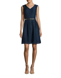 Ellen Tracy Sleeveless Burnout Striped Fit And Flare Dress Navy