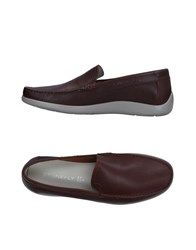 Stonefly Loafers Dark Brown