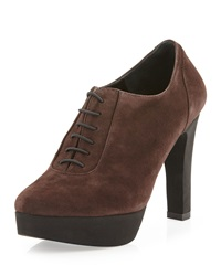 Andre Assous Brynn Suede Oxford Bootie Brown