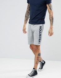 Hollister Large Logo Print Sweat Shorts In Grey Marl Grey Marl