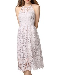 Donna Morgan Floral Lace Dress Powder