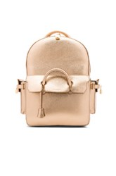 Buscemi Phd Backpack In Metallics