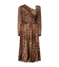Dolce And Gabbana Leopard Print Chiffon Dress Female Brown