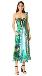 Rochas Strapless Print Dress Bright Green