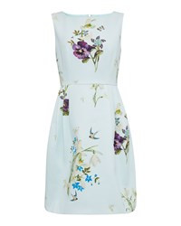 Ted Baker Loolina Spring Meadow Skater Dress Pastel Blue