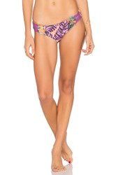 Maaji Lady Violet Bottom Purple