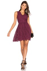Bobi Black Lace Crochet Overlay Fit And Flare Sleeveless Dress Wine