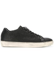Leather Crown Perforated Sneakers Black