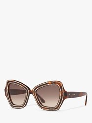 Celine Cl4067is 'S Studded Butterfly Sunglasses Tortoise Brown Gradient