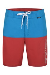 Animal Normal Board Shorts Blue