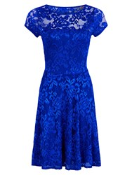 Hotsquash Lace Fit N Flare Dress Royal Blue