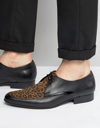 House Of Hounds Leopard Derby Shoes Black