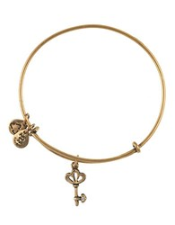 Alex And Ani Skeleton Key Charm Bangle Bracelet Gold