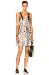 Calvin Klein Collection Knox Multi Print Crew Neck Dress In Gray Metallics Neutrals Polka Dots Gray Metallics Neutrals Polka Dots