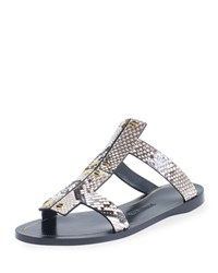 Tom Ford Studded Python Flat Sandal Gray