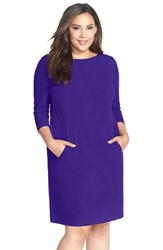 Plus Size Women's Tahari By Arthur S. Levine Seamed A Line Dress Purple