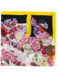 Dolce And Gabbana Floral Print Scarf Purple