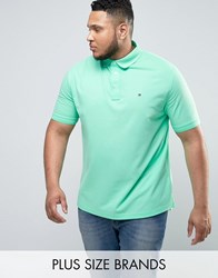 Tommy Hilfiger Plus Luxury Pique Polo Flag Logo In Light Green Green