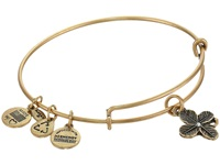 Alex And Ani Lucky Clover Charm Bangle Rafaelian Gold Finish Bracelet