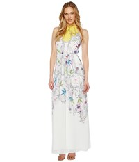 Ted Baker Ellly Passion Flower Maxi Dress Yellow Women's Dress