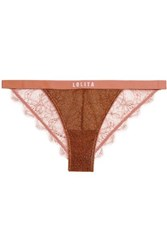 Love Stories Wild Rose Metallic Stretch Knit And Lace Briefs Bronze