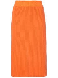 Calvin Klein 205W39nyc Ribbed Skirt Yellow And Orange