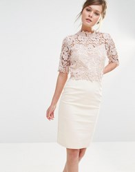 Paper Dolls High Neck Lace Dress With Pencil Skirt Mink Beige Pink