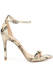 Sam Edelman Ariella Snakeskin Pattern Sandals Multicolour