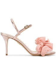 Charlotte Olympia Ruffle Trim Sandals Pink And Purple