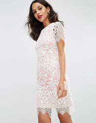 Asos Bodycon Pencil Dress In Border Lace White