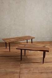 Anthropologie Odion Coffee Table Brown